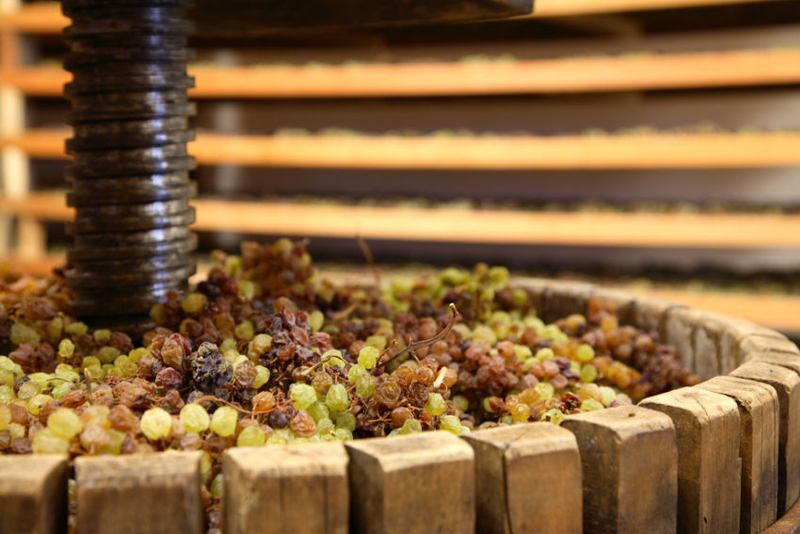DiVinNosiola 2018 - quando il vino si fa santo
