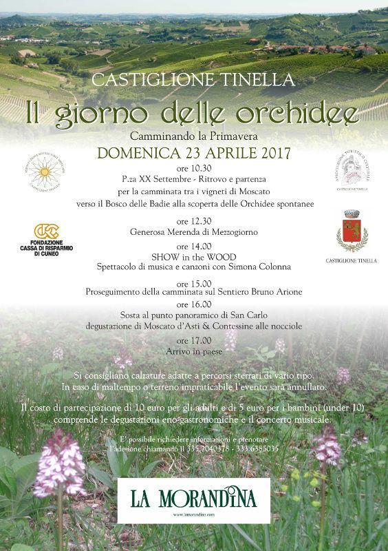 """""""Il Giorno delle Orchidee"""" 2017 a Castiglione Tinella"""