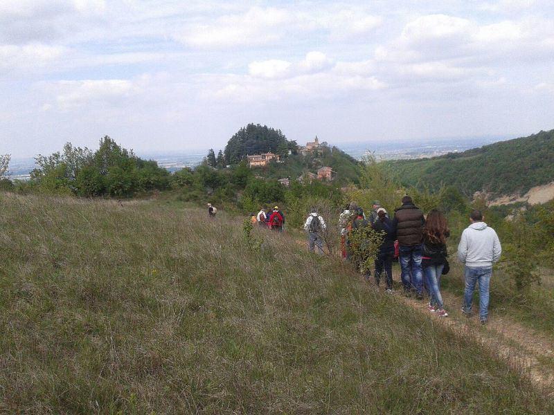 Escursione naturalistica tra i vigneti e gli ulivi di Codevilla (Pv)