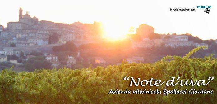 Note d'Uva 2016 alla cantina Spallacci Giordano