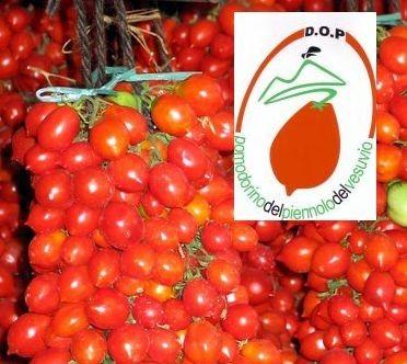 Degustazione del Pomodorino del Piennolo del Vesuvio DOP a Nocera Inferiore