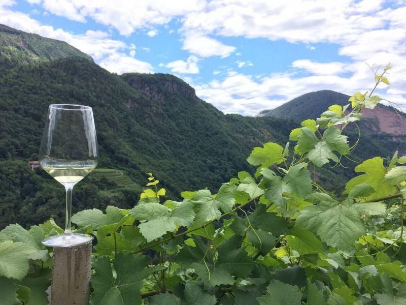 Rassegna Müller Thurgau: Vino di Montagna 2018