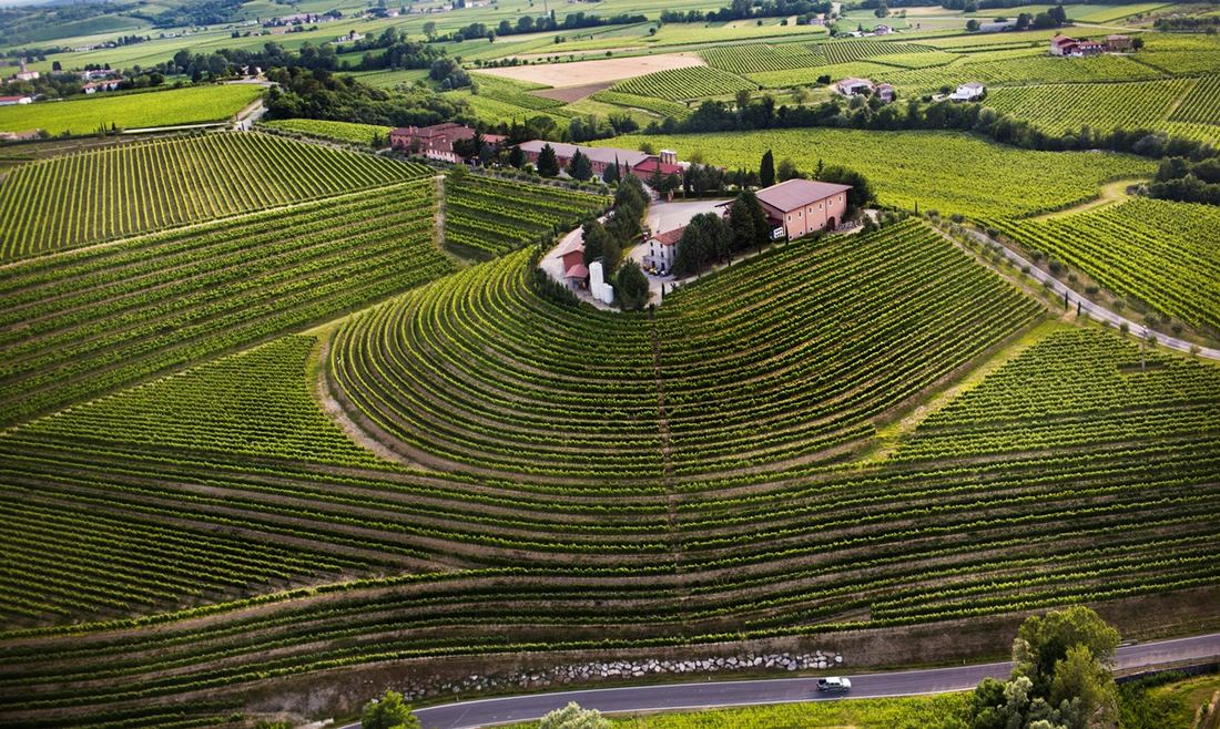 Art&Taste at the Zorzettig Winery
