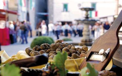 Tartufo&Birra - Festival dell'Alogastronomia