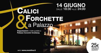 Calici e Forchette a Palazzo
