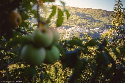 Viaggio nel borgo delle mele