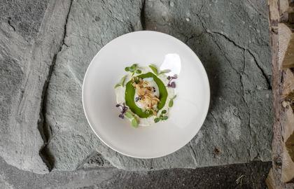 Nuova Cucina Capitolo 2 - Friuli Venezia Giulia Via dei Sapori