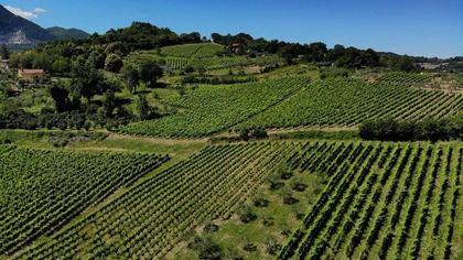 Wine Trekking a Lapio, Borgo del Fiano
