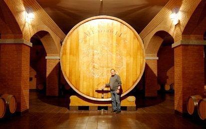 Visita alla botte più grande del mondo e degustazione di Amarone