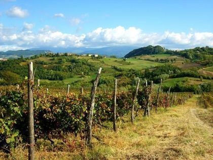 Aperitivo con vista - Montemarzino