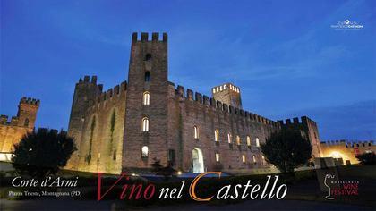Vino nel Castello a Montagnana (PD)