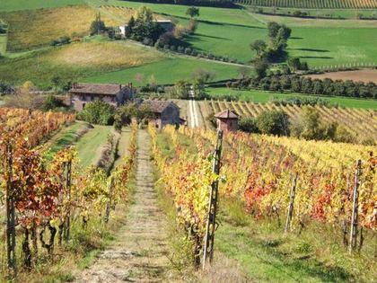 Abbinamento vino e cibo con AIES al Podere Riosto di Pianoro