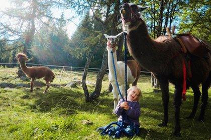 Comano: una vacanza tra passeggiate nella natura ed esperienze in fattoria
