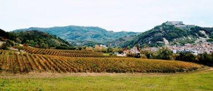Foliage  DiVino, l'autunno a colori in Monferrato