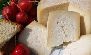 Festa a casu, a Nardò degustazione di formaggi del Salento