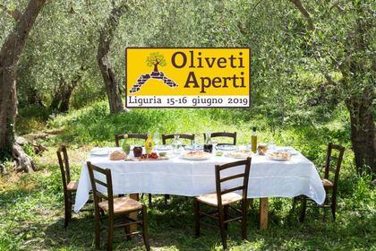 Oliveti Aperti