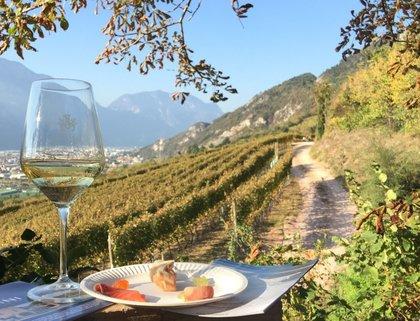 Trentinowinefest, gli eventi dell'autunno 2020