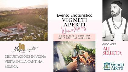 Vigneti Aperti in Veneto - Iomazzucato