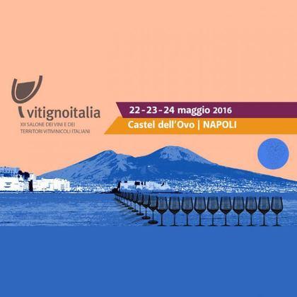 Vitigno Italia 2016