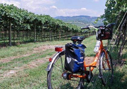 Alla scoperta dei luoghi della Garganega in bicicletta