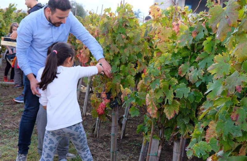 Cantine Aperte in Vendemmia 2021 - Abruzzo