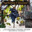 Agriturismo in Jazz all'Azienda Vitivinicola Montespina