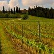 Destinazione Verona e dintorni per l'inizio dell'estate