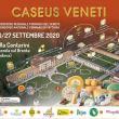 Caseus Veneti