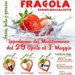 Festa della Fragola 2017 a Cassibile
