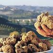 Tartufo, erbe spontanee e vino: Pranzo degustazione al Podere Riosto di Pianoro
