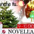 Natale 2017 a Novellara