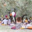 Imbrunire, il picnic tra gli ulivi di Terre Giunchi a Cesena