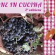 Vigne in Cucina alla Masseria Terra d'Incontro