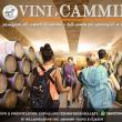 Vini e Cammini, itinerari e cantine abruzzesi