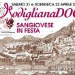 Festa del Sangiovese a Modigliana (FC)