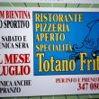 Totano Fritto