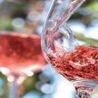 Le medaglie dei Concorso enologico nazionale dei vini Rosati