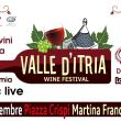 Valle d'Itria wine festival